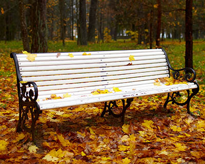 Bench in the autumn park.